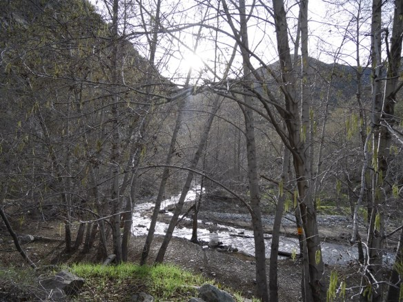 San Gabriel River in Lower San Gabriel Canyon