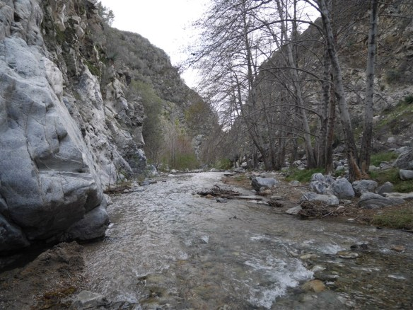 One of the many steam crossings required due to the river flowing into one of the canyon walls.