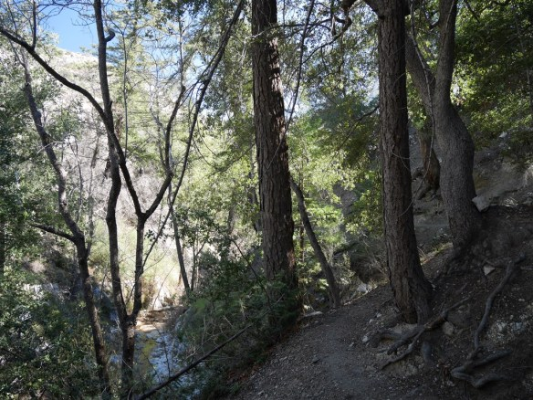 The short hike down Devil's Canyon to the camp is easy to follow and is often shaded and next to a stream (at least early in the year) for a significant portion of the journey.