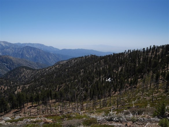 View toward Copter Ridge from the Pacific Crest Trail.