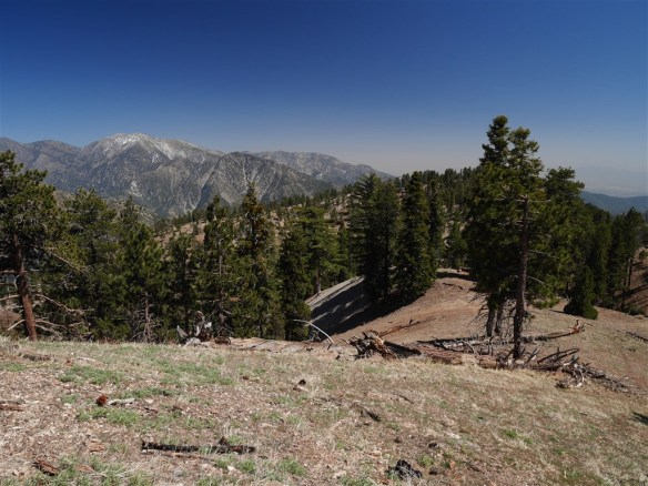 View toward Mt. Baldy and the last significant bump on Copter Ridge.