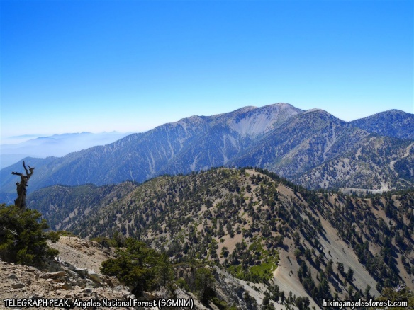 View toward Mt. Baldy from Telegraph Peak.