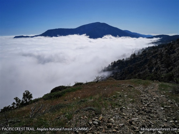 View toward Mt. Baden-Powell of the ephemeral sea of clouds rolling in and forming a coastline above 7,000'.