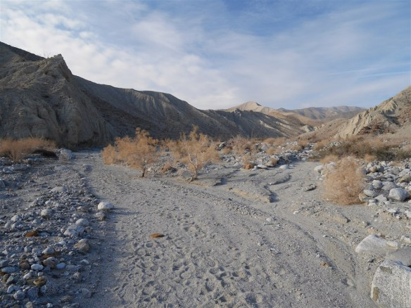 Smoke Tree Canyon on January 10, 2015, in the Anza-Borrego Desert. The year started off great but craziness off the trails kept me away. A demoralizing third straight year of significant drop off in hikes yielding a paltry 49 covering just over 339 miles.