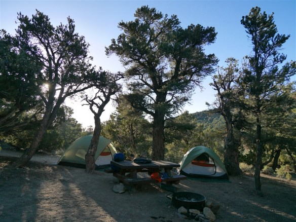 Grandview Campground where my daughter and I camped before visiting the Ancient Bristlecone Pine Forest. One of the few real high points in a disappointing year dealing with numerous injuries. This was another down year with my hiking totals falling to 59 hikes covering just over 430 miles.