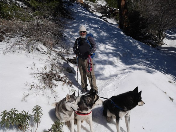 Starting downhill with the hiker's three dogs.