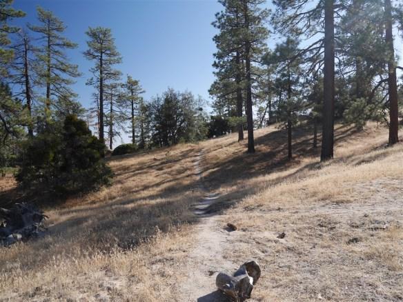 Trailhead view at Mt. Hillyer.