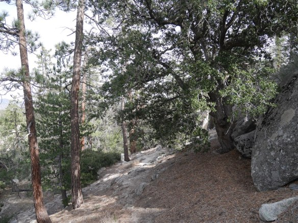 View from the trail going around the boulders mentioned above.