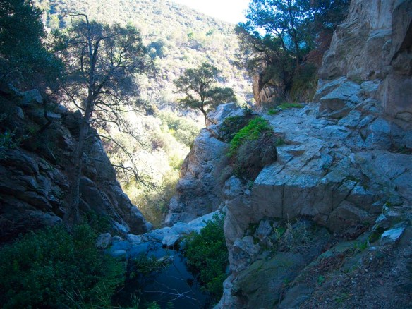 View from the Upper Falls Trail.