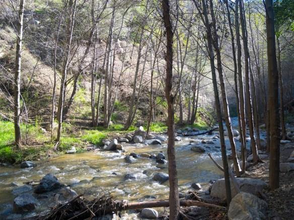 Eaton Falls Trail (1-14-2017)