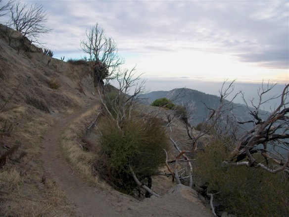Upper San Gabriel Peak Trail
