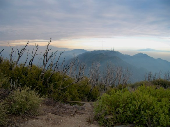 View from San Gabriel Peak looking toward Mt. Wilson.